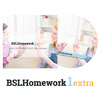 BSLHomework1extra Digital or DVD